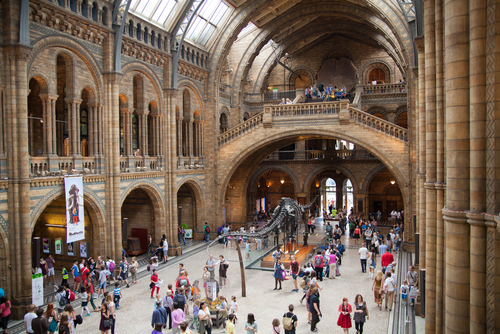 National History Museum-Londra