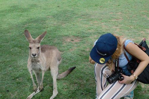 Siti di incontri a Brisbane